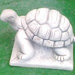 ART. AN-10 TARTARUGA