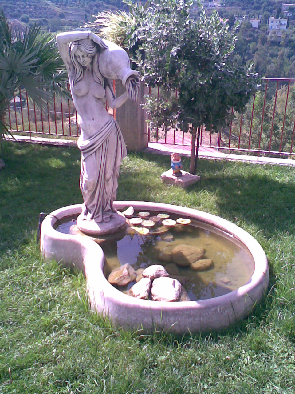 Laghetto con fontana for Acqua verde laghetto
