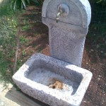 fontana sicilia